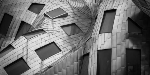 Zoom sur Frank Gehry